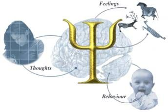 Psychology - Psychology symbol and images